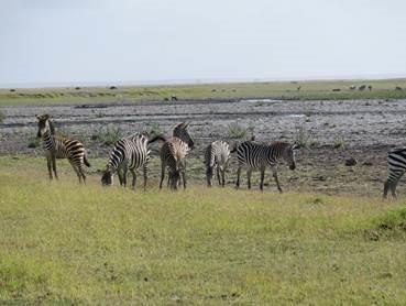 Viaggio Solidale in Kenya